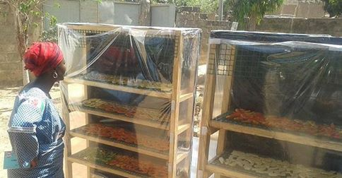 Ingenieria de Alimentos - UPV - Colegio Mayor Ausias March -