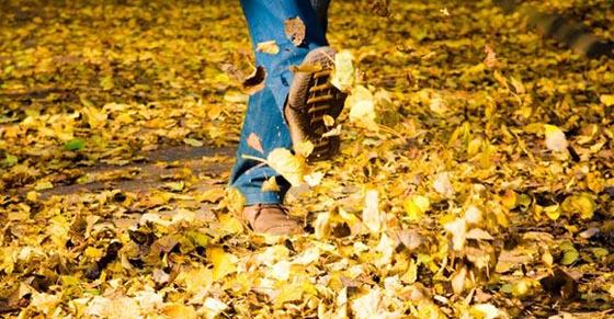 Paseo-en-otoño-con-hojas