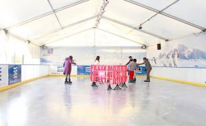 Pista sobre hielo Nuevo Centro