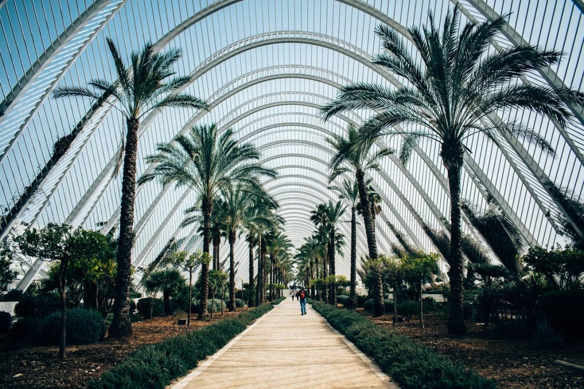 Planes y ocio para estudiantes en Valencia 2019